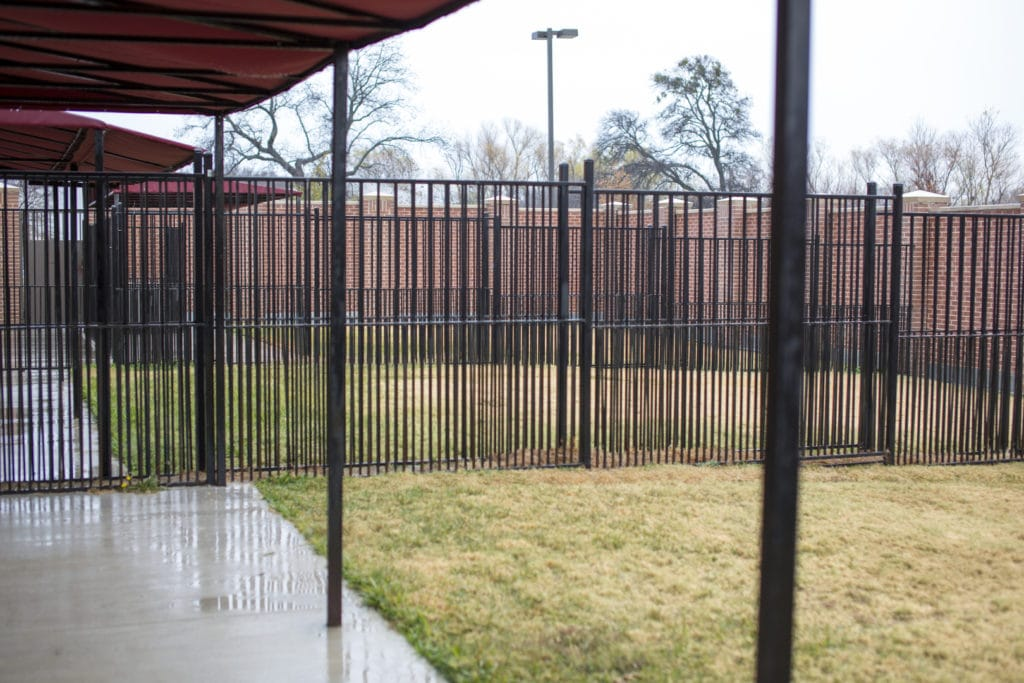 Outdoor Fenced Play Area