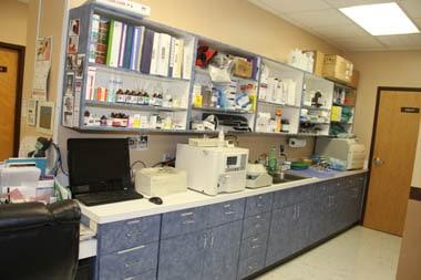 Alma Lab