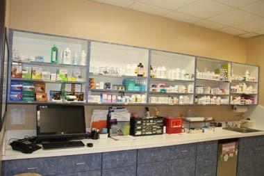 Alma Lab 2
