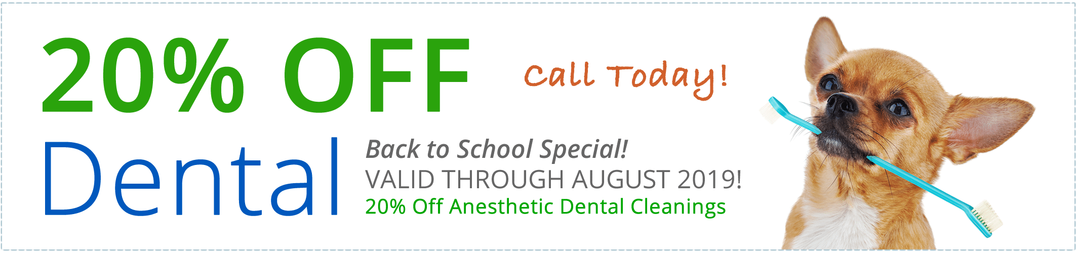 Pet Dental Cleaning Specials Frisco and Alma Texas